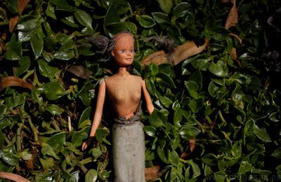 Fotografía de una Muñeca en la Isla de las Muñecas en Xochimilco
