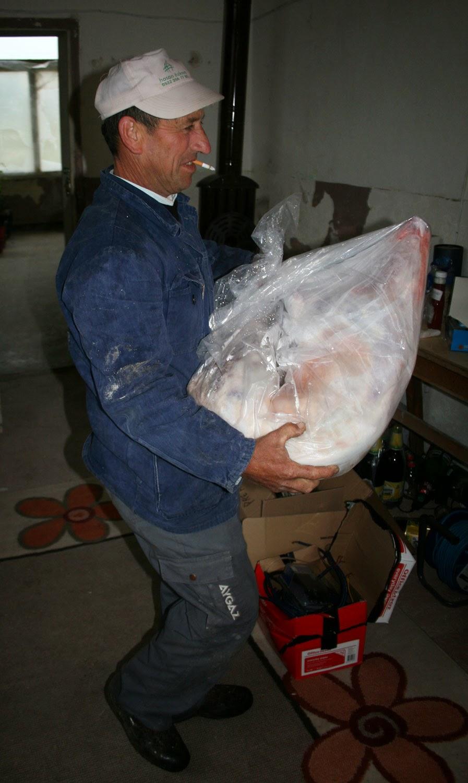 Bekir and his precious parcel