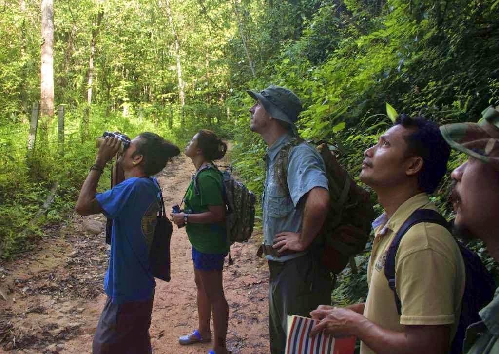 Future Guides searching for animals in the Khao Sok Jungle