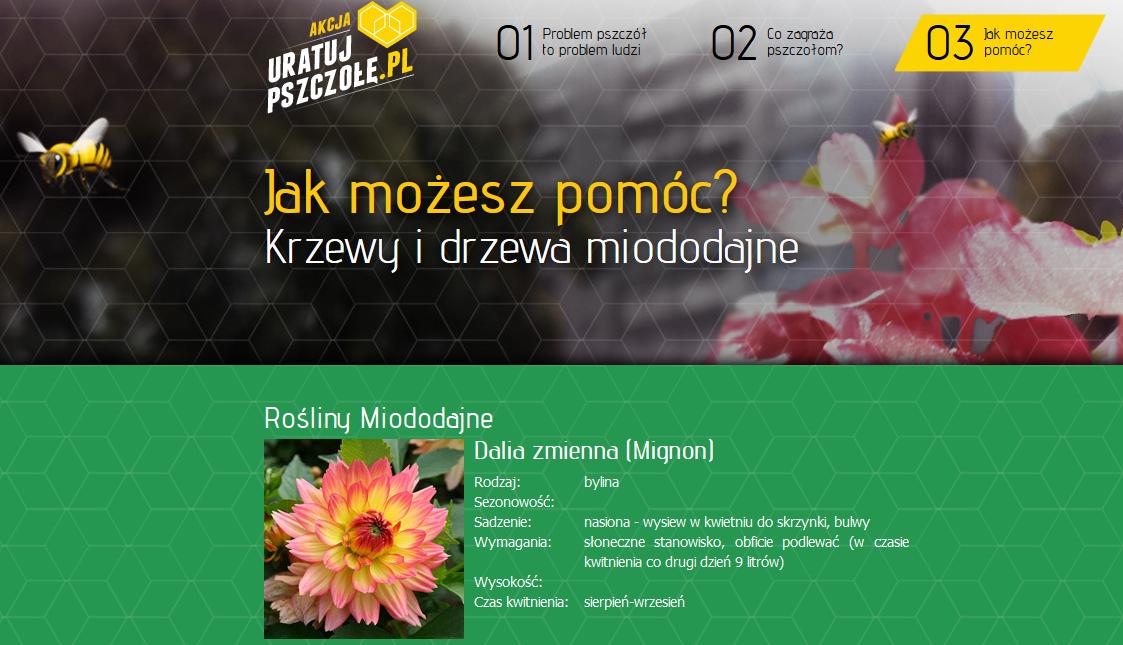 http://www.uratujpszczole.pl/03_rosliny_miododajne