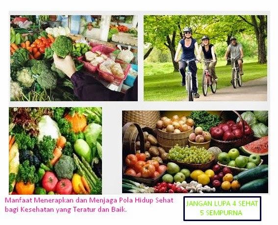 Manfaat Menerapkan dan Menjaga Pola Hidup Sehat bagi Kesehatan yang Teratur dan Baik