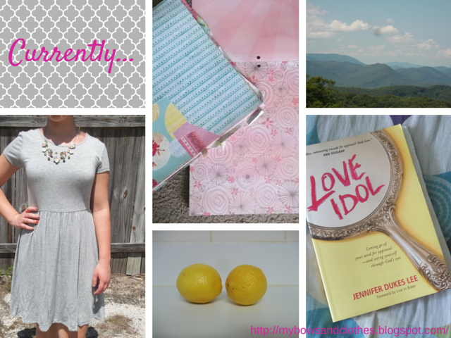 scrapbook paper, Tennessee, fit and flare grey dress, lemonade, Love Idol book