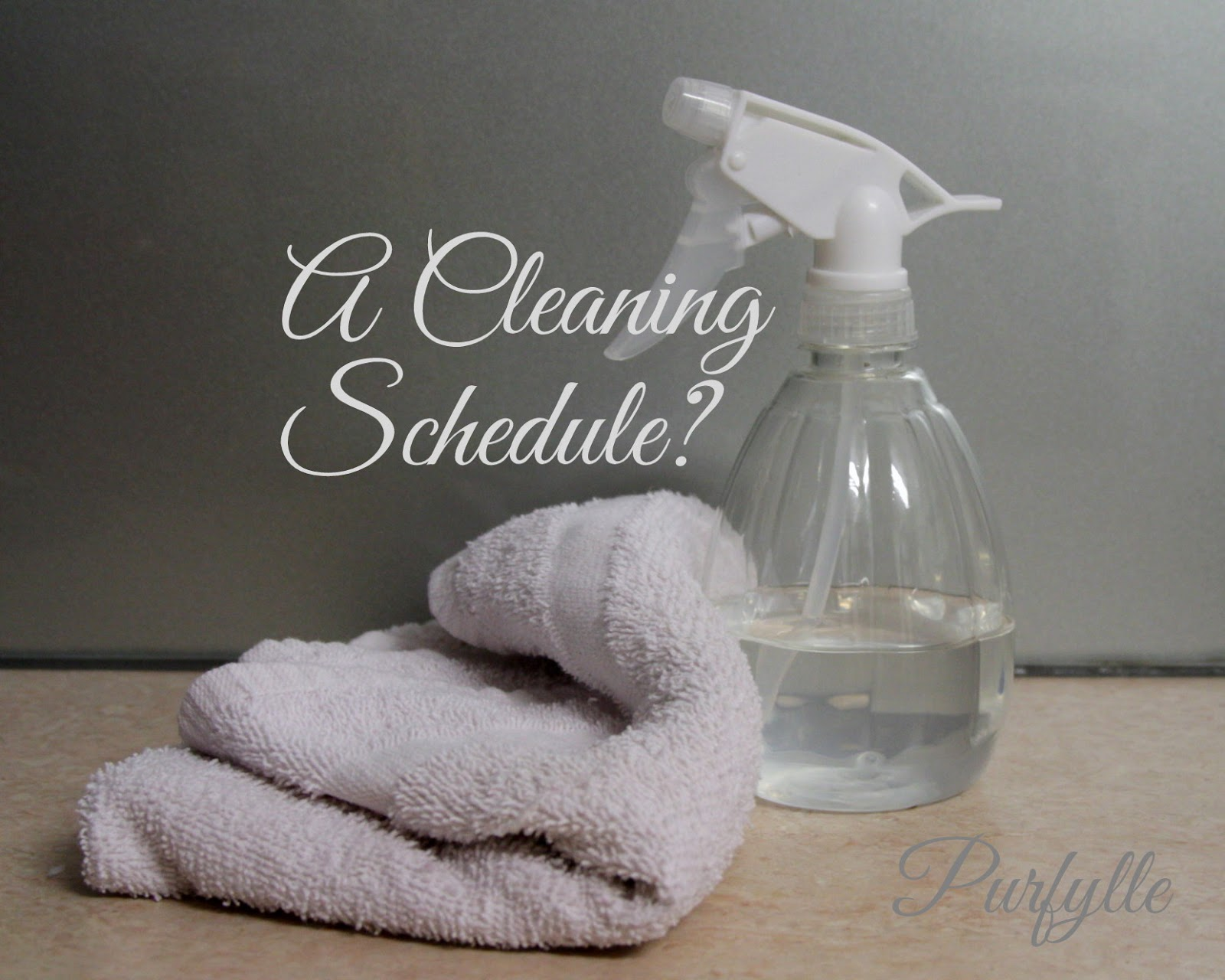 cleaning kit - vinegar and cloth