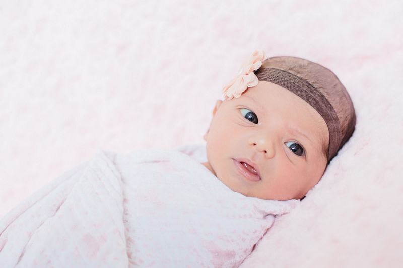 palm beach newborn photography