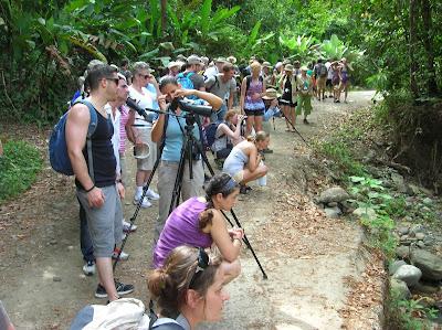 Parque Nacional Manuel Antonio,Costa Rica, vuelta al mundo, round the world, La vuelta al mundo de Asun y Ricardo, mundoporlibre.com
