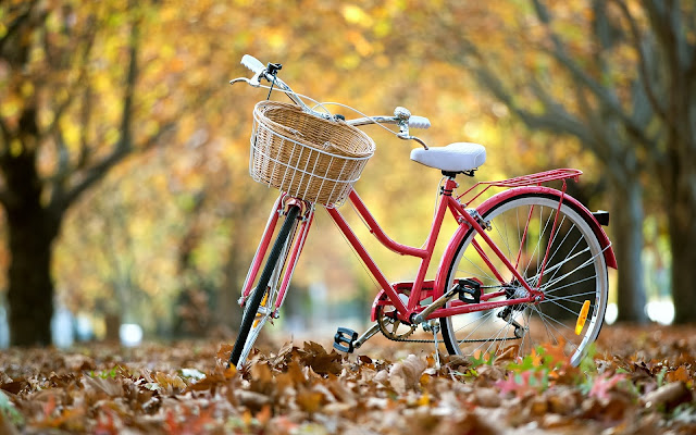 Bike In The Autumn