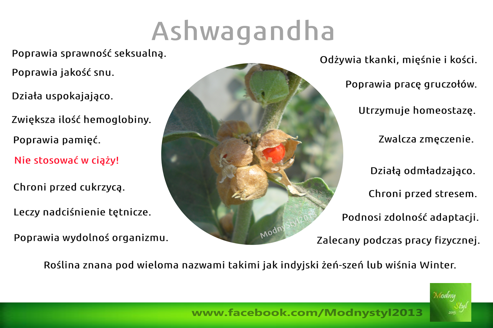 Ashwagandha czyli zimowa wiśnia