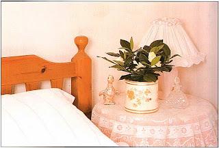 Если вам нравится опьяняющий запах гардений, поставьте одну из них на столик у кровати