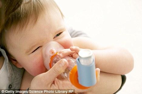 bayi asma