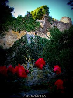 Santa Catalina Jardín botánico Álava-