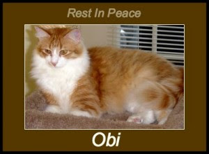 RIP OBI