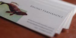 Bruno Fernandez