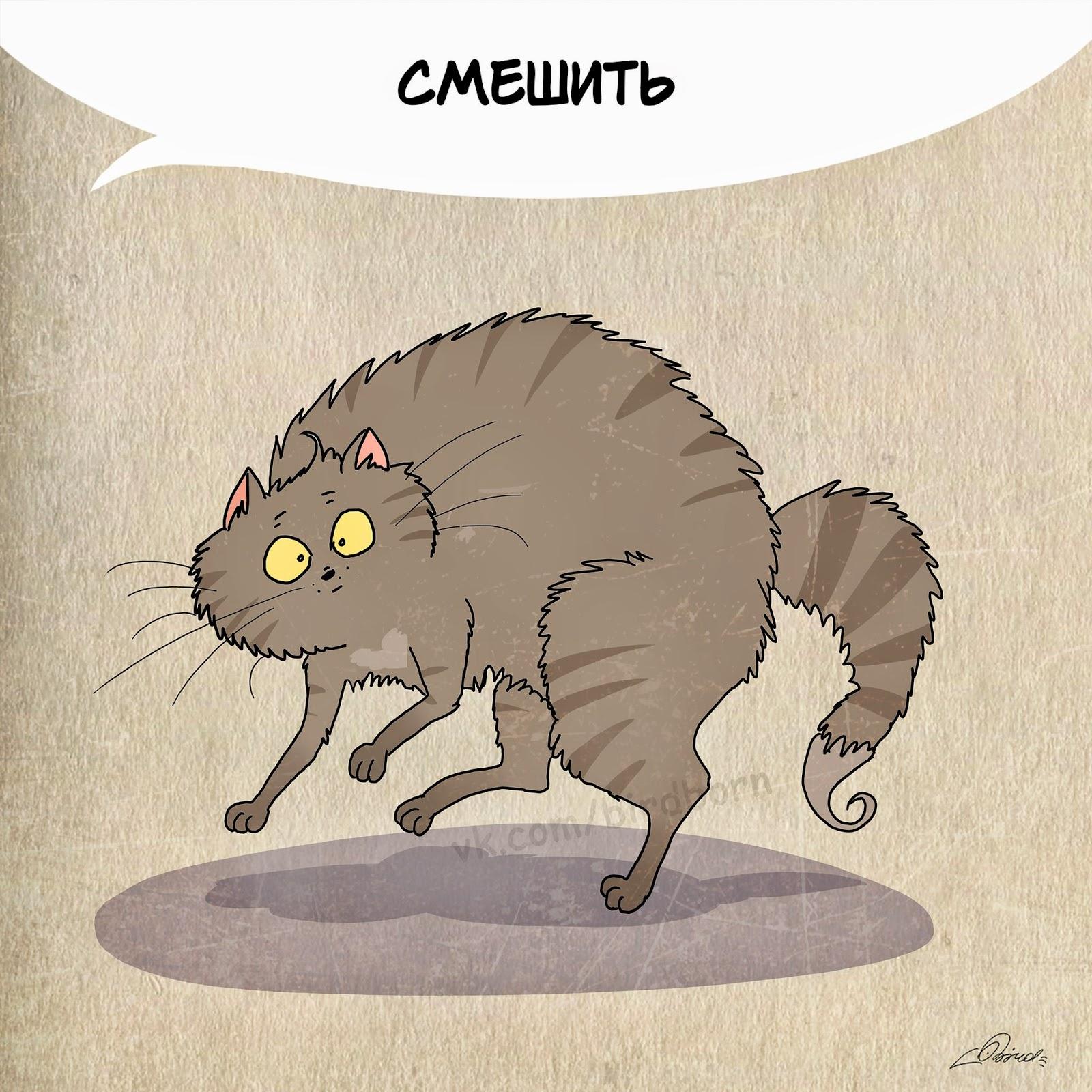 День кошек международный поздравления