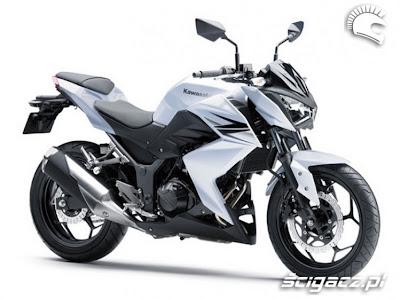 Kawasaki Z250 2013
