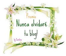 Nunca olvidaré tu blog