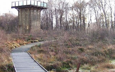 Flanders Moss viewing Tower