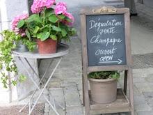 Champagne Tasting in France
