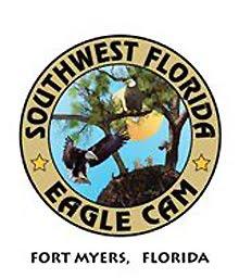 SWF Eagle Cam