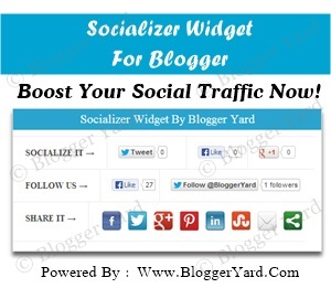 Socializer Widget