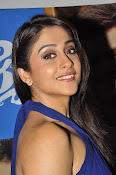 Regina cassandra latest photos-thumbnail-9