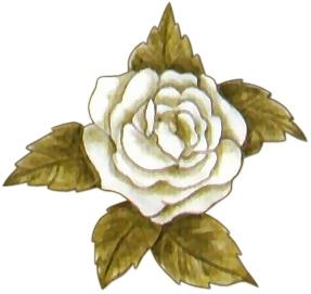 dibujos rosas blancas para imprimir