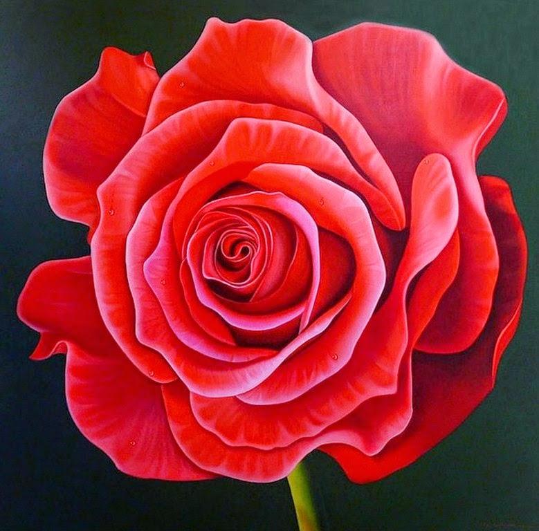 bodegones-de-hermosas-flores