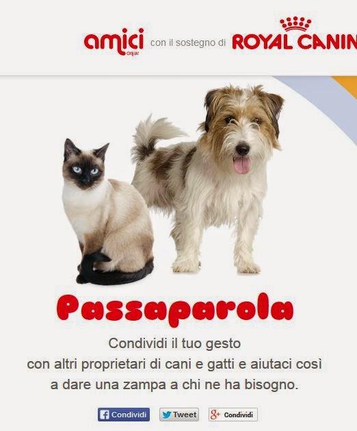 True feline good blog settembre 2014 - Gattile bagno a ripoli firenze ...