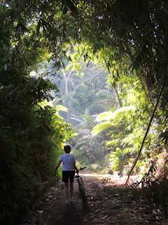 Ubud, Bali, cycling