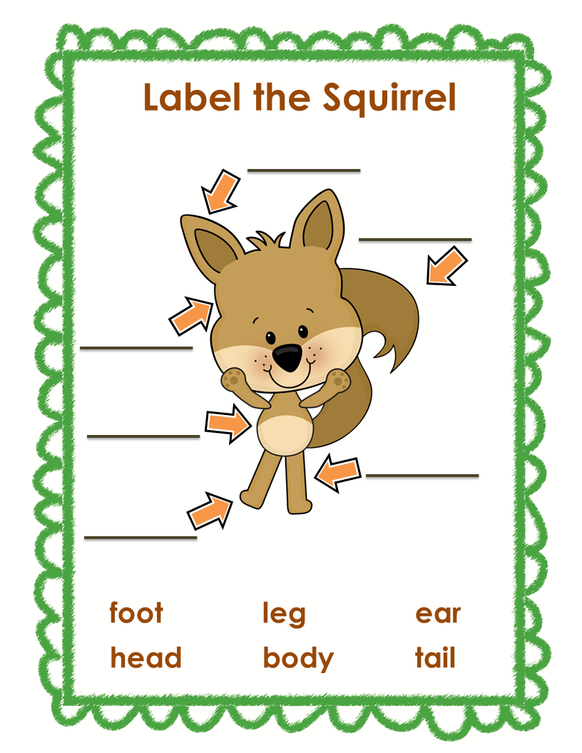 squirrels essay The arctic ground squirrel's main habitat is the arctic tundra the squirrels live in the sandy soil for easy digging and good drainage the arctic ground.