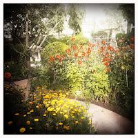 gardens at Sadhana Mandir
