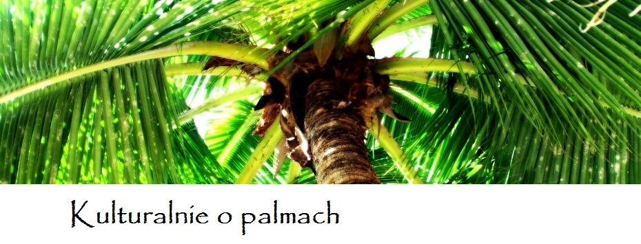 O palmach ogrodniczo i kulturalnie ;)