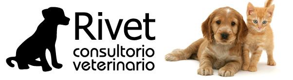 Nuestra veterinaria de confianza