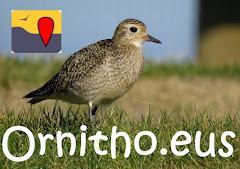 Ornitho.eus