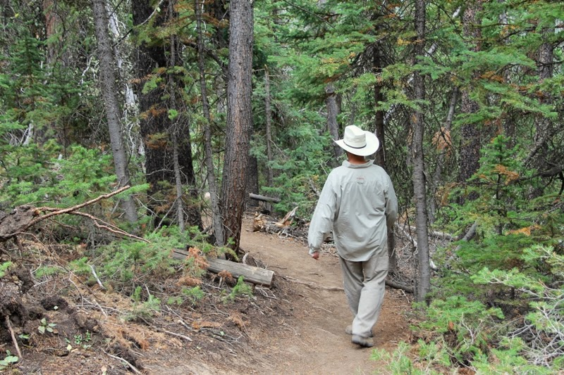 Papa heads down the trail at Bucking Mule Falls, Bighorn Mountains, WY
