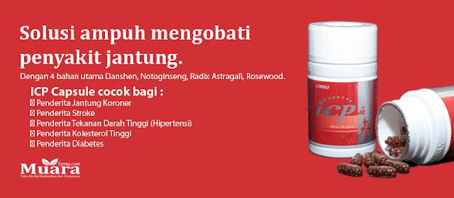 Obat Herbal Jantung Koroner Akut, obat jantung koroner alami,  ICP Capsule