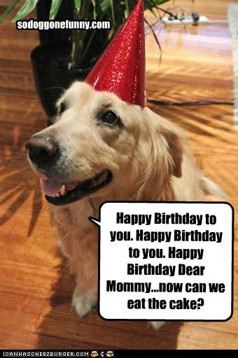 Happy Birthday Dog Quotes ~ Dog funny birthday quotes quotesgram