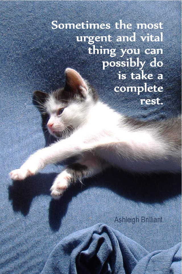 visual quote - image quotation for CALMNESS - Sometimes the most urgent and vital thing you can possibly do is take a complete rest. - Ashleigh Brilliant