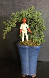 Admiral Ackbar in a bonsai at Stein Your Florist Co.