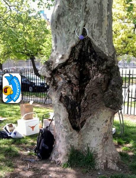 HUMOR: Cfare Lloj Peme Eshte Kjo?