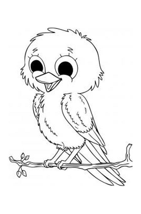 رسم طائر عصفور جميل على غصن لتلوين الاطفال