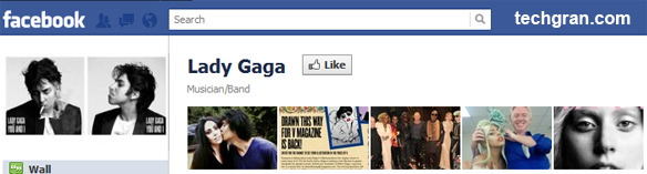 Lady Gaga on Facebook,Musician/Band