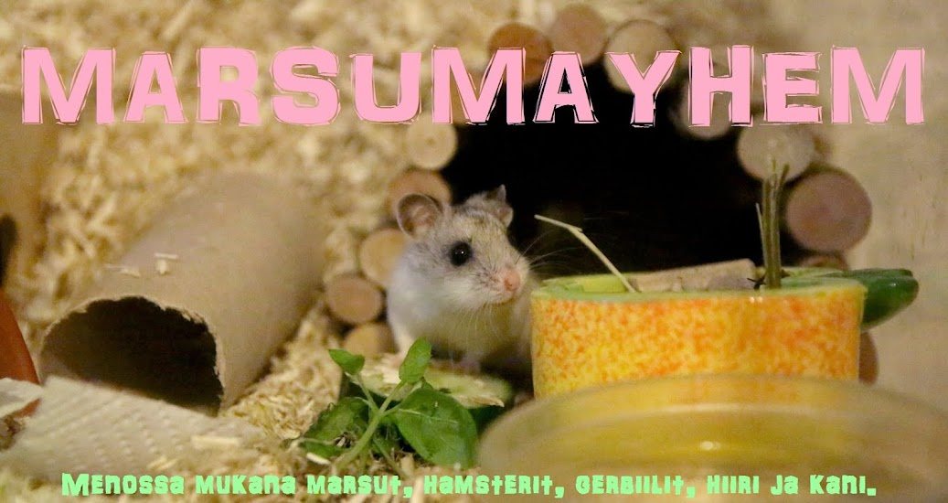 MARSUMAYHEM