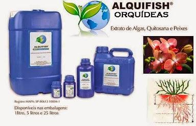 ALQUIFISH ORQUÍDEAS