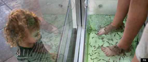 Whats happening in the usa october 2011 for Fish pedicures near me