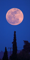 First Full Moon Of Spring Tonight