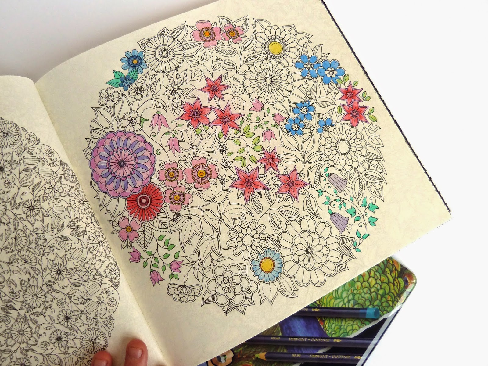 a coloring book for grown ups secret garden review - My Secret Garden Coloring Book