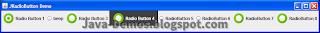Screenshot of JRadioButton Example