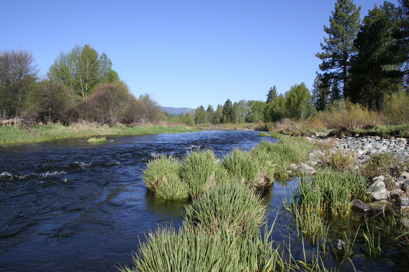 Jon Baiocchi Fly Fishing News Upcoming Middle Fork