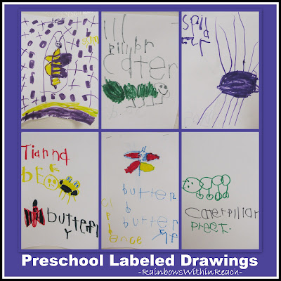photo of: Preschool Labeled Drawings of Spring Creatures