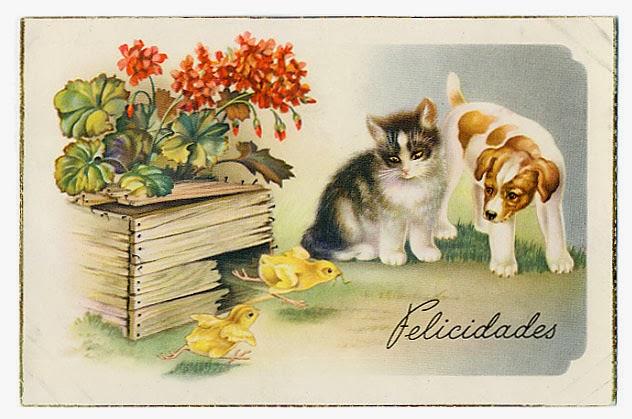 Carte postale ancienne chat chien poussin
